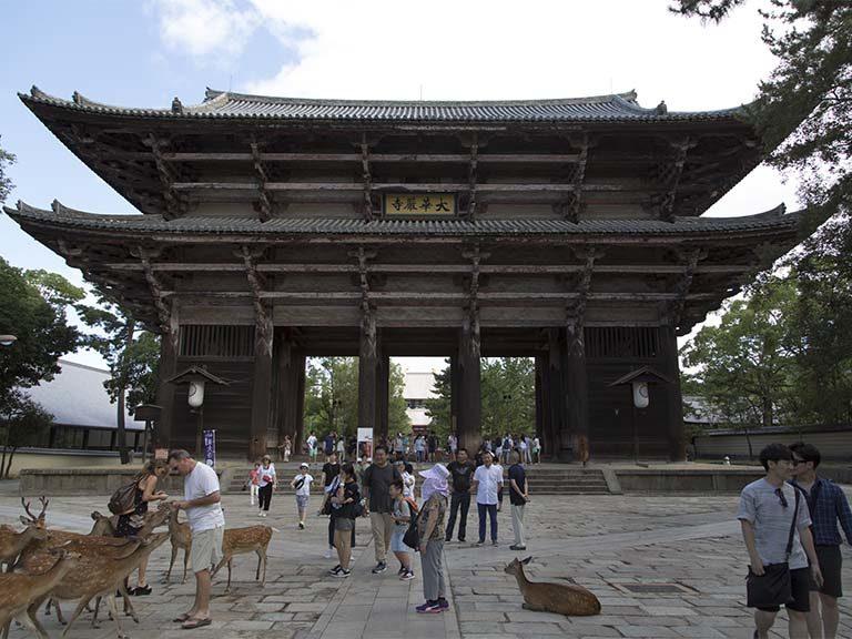 東大寺と浄瑠璃寺
